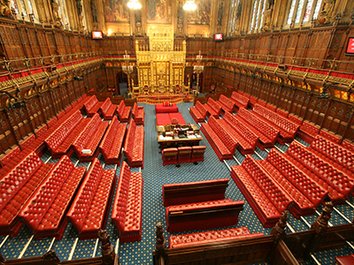 Training blog: the paths to peerage